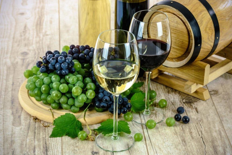 vin fakta frukt och bär