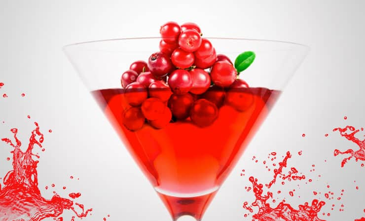 Bubblande lingondrink cocktail mousserande